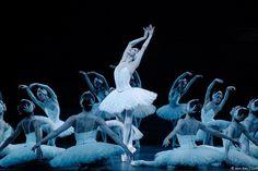 Heloise Bourdon in Le lac des cygnes, Paris Opera
