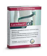 Probiotika: Lactobact AAD enthält 5 speziell ausgesuchte probiotische Bakterienkulturen in einer besonders hohen Konzentration. Lactobact AAD reduziert das Risiko einer Antibiotika-assoziierten Diarrhö. Das heißt kein Antibiotikum ohne Lactobact AAD!