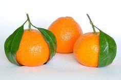 Mandarin Oranges | 橘 | Pinned Time: 20140804 02:37, Taipei Time | #Mandarin(另義為中國的官話)