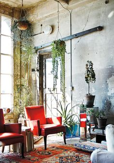 Rough walls, long, hanging plants, and a jolt of red: perfect imperfection.