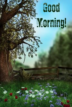 Morning Wish, Good Morning Images, Outdoor Furniture, Outdoor Decor, Park, Gud Morning Images, Good Morning Picture, Parks, Backyard Furniture