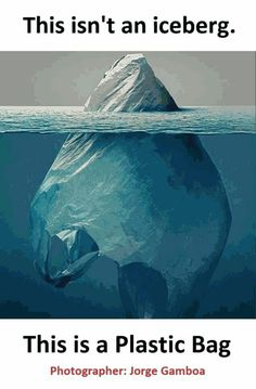 Amazing photography full of meaning . Wow Facts, Weird Facts, Stunning Photography, Nature Photography, Funny Facts, Funny Jokes, Funny Diet, Ocean And Earth, Interesting Facts About World