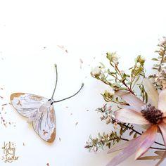 Kirbee Lawler - Cabbage Moth