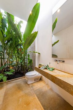 Architecture, Powder Room Design With Green Vegetation Plus Mirror Plus Brown Tile Floor Ideas The Spectacular House At Hilly Contour Buildi. Modern Interior Design, Home Design, Interior Architecture, Tropical Architecture, Design Ideas, Indoor Outdoor Bathroom, Outdoor Toilet, Powder Room Design, Interiores Design
