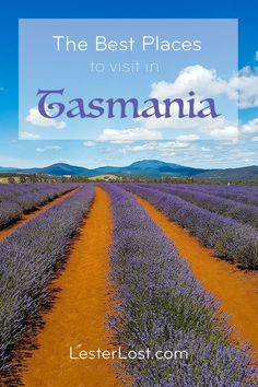 Tasmania is one of these places in Australia I keep going back to. Since I discovered it on my mini-moon almost ten years ago, I keep adding to my list of places to visit on a Tasmania road trip. via LesterLost Perth, Brisbane, Melbourne, Sydney, Tasmania Australia, Visit Australia, Australia Travel, Australia Holidays, Travel Guides