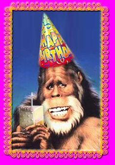 Happy Birthday, you party animal! Happy Birthday Nephew Funny, Happy Birthday Animals, Happy Birthday Ecard, Very Happy Birthday, Funny Birthday Cards, Birthday Greetings, Birthday Wishes, Birthday Sayings, Birthday Humorous