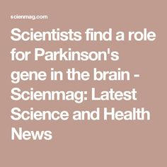 Scientists find a role for Parkinson's gene in the brain - Scienmag: Latest Science and Health News
