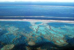 Great Barrier Reef near Whitsunday's, July 82 Airplane Window, Great Barrier Reef, Aerial Photography, Aerial View, Places Ive Been, Natural Beauty, To Go, Waves, Nature