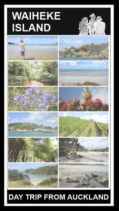 Waiheke island - a great day trip from Auckland! FRome vineyeards to beaches and amazing restaurants - here is what we did on Waiheke ;)