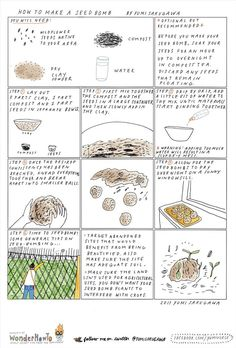 Guerilla Gardening 101: How to Make a Seed Bomb « The Secret Yumiverse