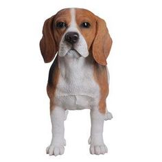 Delightful Beagles Make Great Pets Ideas. Exhilarating Beagles Make Great Pets Ideas. Dachshund Funny, Dachshund Puppies, Pocket Beagle, Beagle Puppy, Beagles, Rottweilers, Happy Dogs, Dog Owners, I Love Dogs