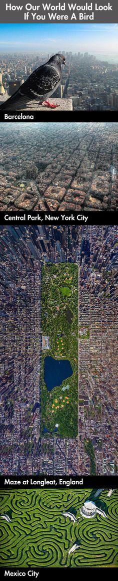 If I was a Bird, photos from a birds eye view..literally #photosfromtheair #incredible