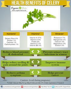 Health Benefits of Celery | Organic Facts- Celery lowers cholesterol, prevents cancer, manages pain from arthritis, helps weight loss attempts, detoxifies the body, reduces high blood pressure, and promotes overall health in a vast number of ways.