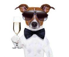 Подарок на Новый Год 2015. Причем с удовольствием этот напиток пьют как женщины, так и мужчины.Это очень, чрезвычайно, просто, вообще без каких-либо заморочек и дорогостоящих продуктов. Все можно ку…