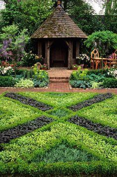ஜ۩ஜ    Herb garden