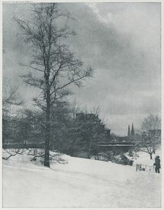 Alfred Stieglitz, A Winter Sky - Central Park, 1897, from Picturesque Bits of New York and Other Studies, Harvard Art Museums/Fogg Museum.
