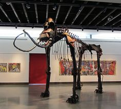 Columbia Mammoth installed at the Moses Lake Museum and Art Center.