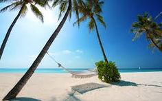 Visit http://hamiak.lifestartsat21.com/lcp3/ .Browse our Gallery and see the most popular tropical destinations