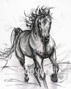 Hey, I found this really awesome Etsy listing at https://www.etsy.com/listing/226776518/horse-charcoal-drawing-horse-decor-horse
