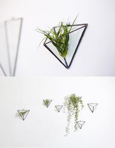 [바보사랑] 테라리움으로 감각있는 공간 연출 #테라리움 #가드닝 #원예 #화분 #다육이 #에어플랜트 #스테인드글라스 #유리공예 #인테리어 #Terrarium #Gardening #pollen #flowerpot #afleshyplant #airplant #stainedglass #interiordesign