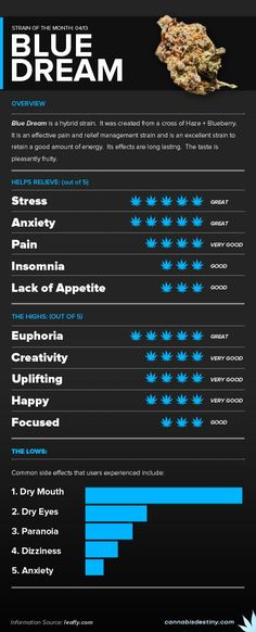 Cannabis Strain Infographic: Blue Dream My favorite!