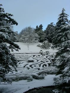 A rare covering of snow for Glendurgan...
