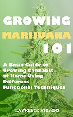 Growing Marijuana 101: A Basic Guide to Growing Cannabis at Home Using Different Functional Techniques