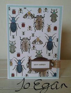 Image Result for beetles and bugs stampin up