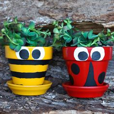 Ladybug and bee pot decoration ideas that are easy to paint at home!