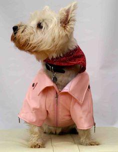 Dog Leather Look Biker Jacket - Pink - SidsStuff.com