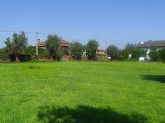 Terreno para construção em Lobão da Beira - Tondela. Construa a casa dos seus sonhos, saiba como em www.remax.pt