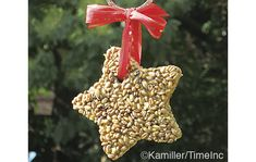 Bird food stars - a great Christmas project for kids