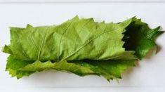 Így készítek télen is fenséges töltött káposztát! A titok egyszerű, csak el kell tenni ezt a fenséges levelet! - Ketkes.com Preserves, Conservation, Cabbage, Keto, Herbs, Automata, Vegetables, Food, Preserve