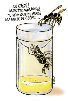 piège a guêpe bouteille plastique | Bien entendu, il est préférable de ne pas tuer les insectes qui nous ...