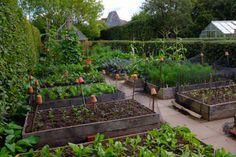 "Monty Don on Twitter: ""The veg garden is at its best in mid-September https://t.co/BrHO9RvhPl"""