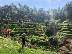 Mount Batur sunrise trek is an incredible experience. If breathtaking views and an endorphin high is up your alley, then read this post first. Rice Terraces, Active Volcano, How To Stay Awake, Adventure Tours, Best Couple, Tour Guide, Need To Know, Trek, Bali