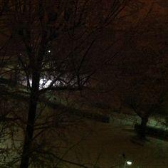 A park, snow, by night