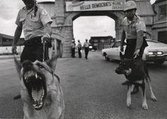 david douglas duncan - welcome to chicago, 1968