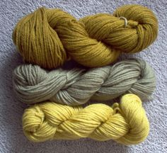 Posts about Yellow Dock written by Cynthia How To Dye Fabric, Spring 2014, Alchemy, Pantone, Spinning, Herbalism, Fiber, Colour, Crafty