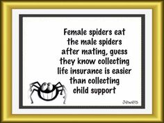 child support.  Never thought I'd have a reason to respect spiders, but here ya go.