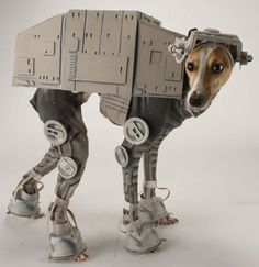 Star wars AT-AT costume for your dog. This is awesome. @Brooke Williams Shiver