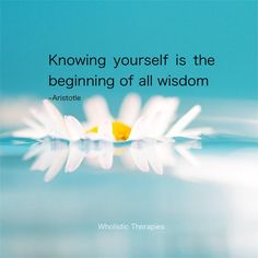 Knowing yourself is the beginning of wisdom.