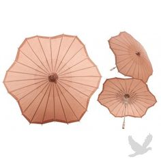 32\ Brown Scalloped Shaped Paper Parasol