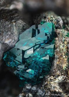 Geology IN: Deep Green Veszelyite Minerals And Gemstones, Rocks And Minerals, Beautiful Rocks, Cool Rocks, Naturally Beautiful, Mineral Stone, Rocks And Gems, Stones And Crystals, Gem Stones