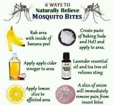 Natural Mosquito Bite Remedies - might need to try these.ella puffs up every time she gets a mosquito bite. Diaz Here you go, a few more ideas :) Natural Health Remedies, Herbal Remedies, Natural Cures, Holistic Remedies, Au Natural, Hair Remedies, Cold Remedies, Natural Treatments, Natural Skin