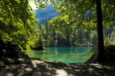 Blausee Lake - Interlaken - Switzerland by Mohammed  Arty on 500px
