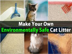 Cat litter is an absolute must if you have indoor cats. What many people don't know is that most cat litter brands contain clay that is strip-mined which is harmful to the environment. While there are brands that are organic and a bit more environmentally friendly, these can be a tad...
