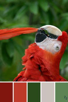 ZJ Colour Palette 695 #colourpalette #colourinspiration