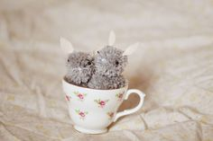 Pinning around: Pom pom bunnies