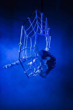 Delia - Aerial Silk, Hoop & Contortion Shows - Hertfordshire: new aerial contortion act ' SPIDER'